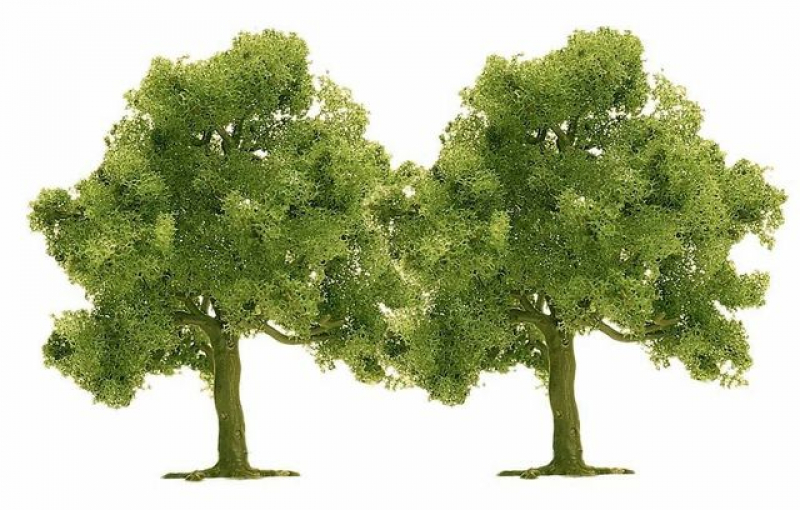 2 Obstbäume Busch N 6627