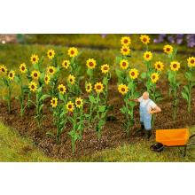 16 Sonnenblumen Faller 181256