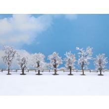 Winterbäume Noch H0 25075